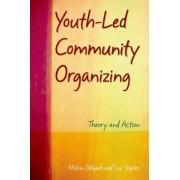 Youth-Led Community Organizing by Melvin Delgado