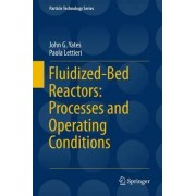 Fluidized Bed Reactors: Processes and Operating Conditions 2017 by John G. Yates