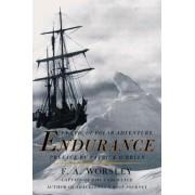 Endurance by Frank Arthur Worsley