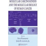 Molecular Carcinogenesis and the Molecular Biology of Human Cancer by David Warshawsky
