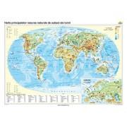 Harta principalelor resurse naturale de subsol ale lumii 100x70 cm