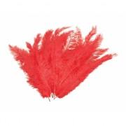 12 lange rode veren