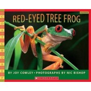 Red-Eyed Tree Frog by Joy Cowley