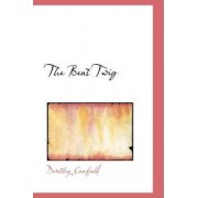 The Bent Twig by Dorothy Canfield