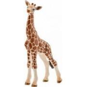 Figurina Schleich Giraffe Calf