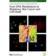 From DNA Photolesions to Mutations, Skin Cancer and Cell Death by Evelyne Sage