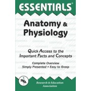 Anatomy and Physiology by Jay Templin