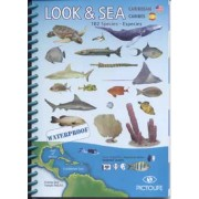 Look & Sea Caribbean