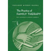The Practice of Family Therapy by Suzanne Midori Hanna