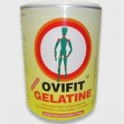 Ovifit gelatine por 300g