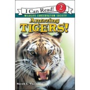 Amazing Tigers! by Sarah L Thomson