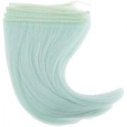 Magideal 15X100Cm Diy Wig Welf Fringe Hair For 1/3 1/4 Bjd Sd Dolls Mint Green