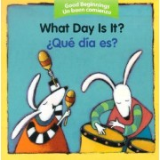 What Day Is It?/zque Dia Es? by Pamela Zagarenski