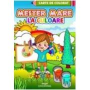 Mester mare la culoare - Carte de colorat