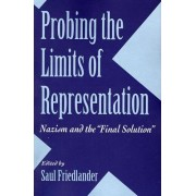 Probing the Limits of Representation by Saul Friedlander