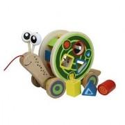 Hape International Hape Walk-A-Long Snail Toy