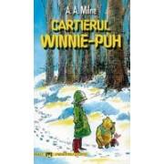 Cartierul Winnie Pooh