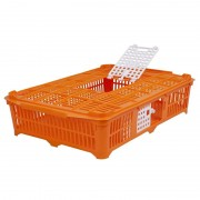 Poultry Transport Crate for Pigeons/Quail (67x40x13 cm)