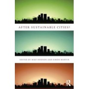 After Sustainable Cities? by Mike Hodson