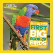 Nat Geo Little Kids First Big Book Of Birds by Catherine D. Hughes