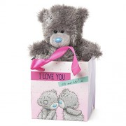 Me to You SG01W4070 5-Inch Tall Tatty Teddy Sitting in a I Love You Lots And Lots Gift Bag Plush Toy by Me To You