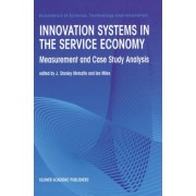 Innovation Systems in the Service Economy by J.S. Metcalfe