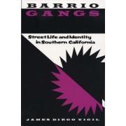 Barrio Gangs by James Diego Vigil
