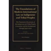 The Foundations of Modern International Law on Indigenous and Tribal Peoples: Basic Policy and Land Rights Volume I by Lee Swepston