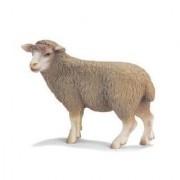 Schleich Sheep Standing