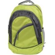 Premium 14 inch Laptop Backpack(Green)