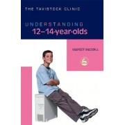 Understanding 12-14-year-olds by Margot Waddell