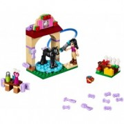 LEGO® Friends Îngrijirea mânzului 41123