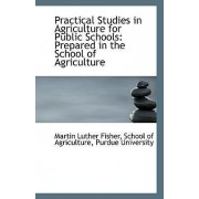 Practical Studies in Agriculture for Public Schools by School Of Agriculture Pu Luther Fisher