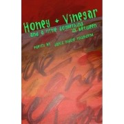 Honey and Vinegar and a Little Something in Between by Janis Nicole Townsend