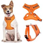 Dexil PAS CHIENS couleur orange Coded Nylon rembourré étanche petite veste harnais pour chien (pas bon avec les autres chiens) prévient les accidents en avertissant les autres de votre à l'avance