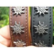 Zgarda din piele cu decoratiuni inserate din argint ( floare de colt )