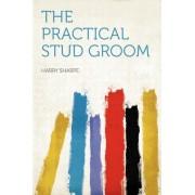 The Practical Stud Groom by Harry Sharpe
