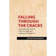 Falling Through the Cracks by Joan Berzoff