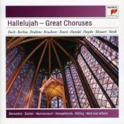 Artisti Diversi - Hallelujah - Great Choruses (0886977486524) (1 CD)