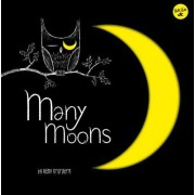 Many Moons: A Fun Guide to Learning about Moon Phases