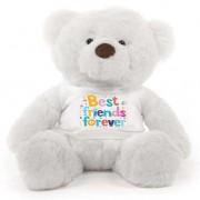 White 2 feet Fur Face Big Teddy Bear wearing a Best Friends Forever T-shirt