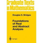 Foundations of Real and Abstract Analysis by Douglas S. Bridges