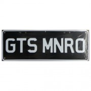 """Novelty Number Plate - GTS MNRO"""