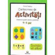 Cartea mea de activitati 4-5 ani - Mara Neacsu