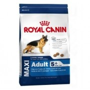 Royal Canin: Size Nutrition Maxi Adult 5+, 15 kg