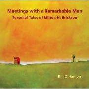 Meetings with a Remarkable Man by Bill O'Hanlon