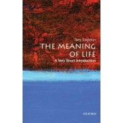 The Meaning of Life: A Very Short Introduction by Terry Eagleton