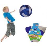 Summertime Volleybal (Zilver/Blauw)