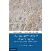 A Linguistic History of Ancient Cyprus by Philippa M. Steele