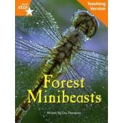 Fantastic Forest Orange Level Non-Fiction by Catherine Baker